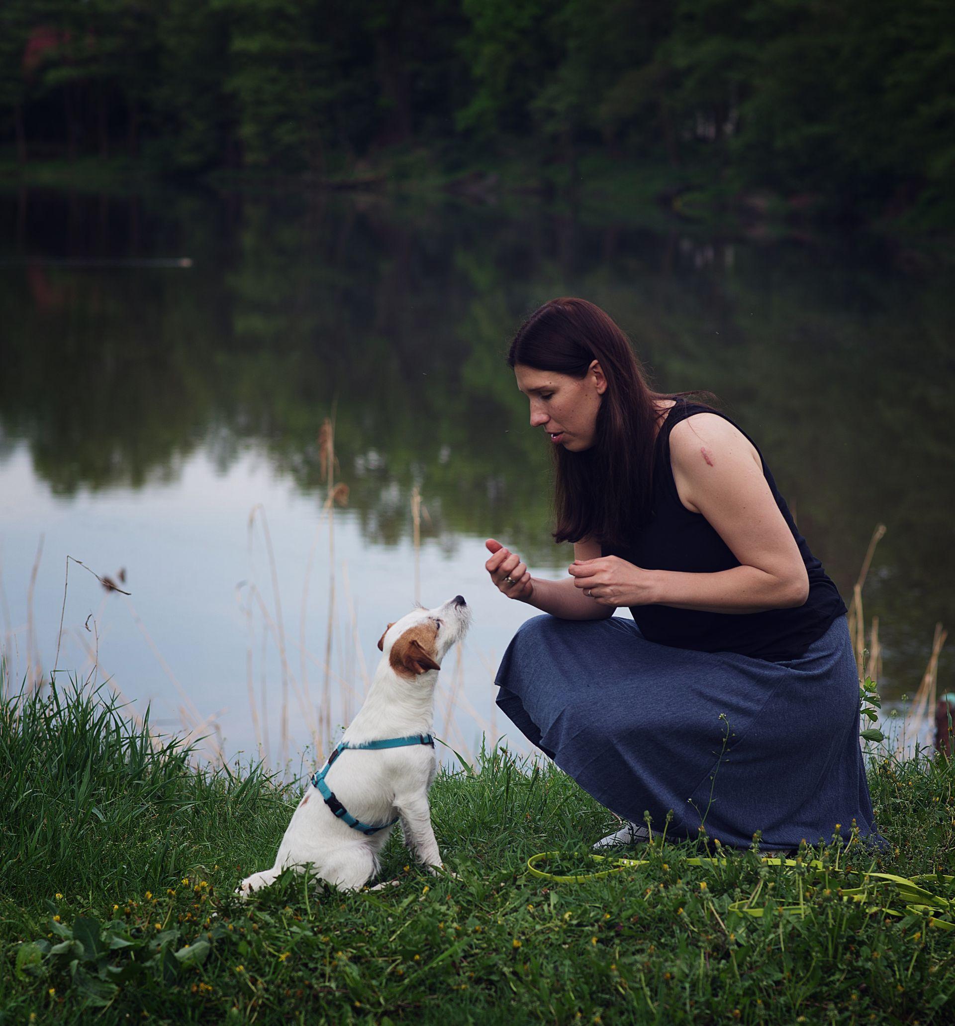 szkolenie psa nad jeziorem